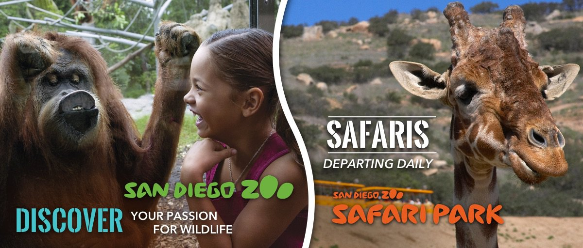 Discount tickets to San Diego Zoo and Safari Park