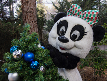 Save $7 on 1-Day Pass during the Holiday Season!